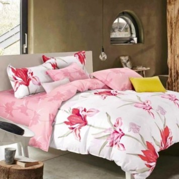Lenjerie Bumbac Percale TBO 10-54